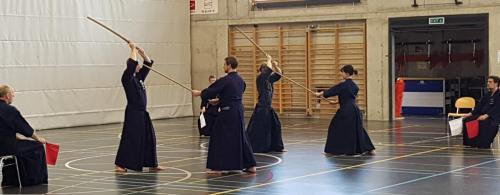 Jodo & Iaido Seminar, Sumiswald Switzerland 2019